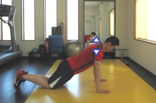 肩甲骨を動かすエクササイズ