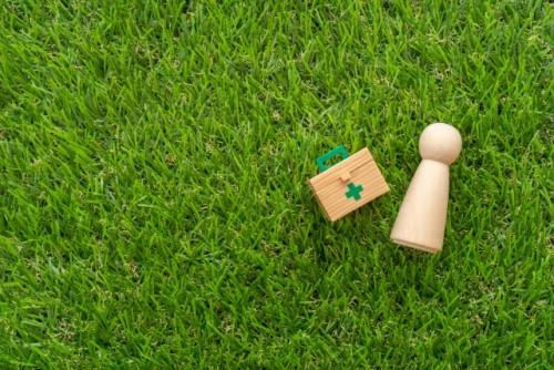 芝生の上で木製の救急箱と人形が置いてある写真